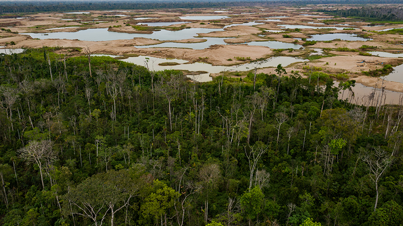 Shallow mining ponds show where the forest once stood in the La Pampa region of Madre de Dios, Peru.
