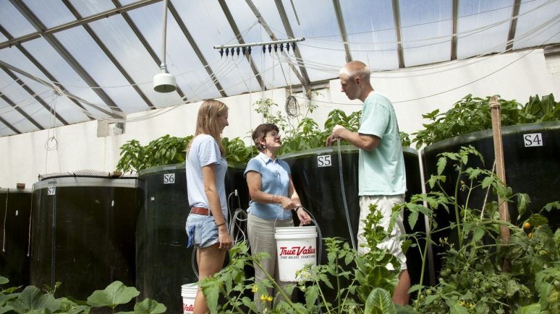 Student and Faculty discuss aquaponic study